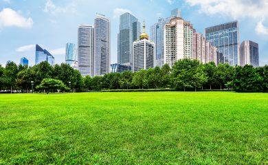 Ciudad Sustentable